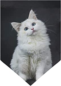 Nigel 28 x 40 & 12 x 18.5 in Garden Flag Yard Banner Double Side Print Blue Eyed Ragdoll Cat