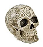 Celtic Owl Knotwork Human Skull Statue Pagan by Private Label