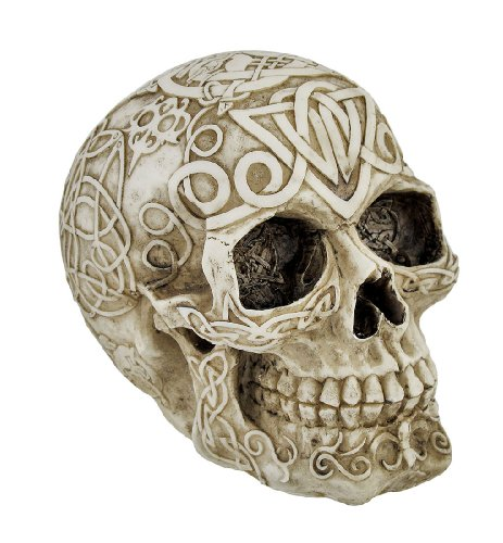 Celtic Owl Knotwork Human Skull Statue Pagan by Private - Resin Skull