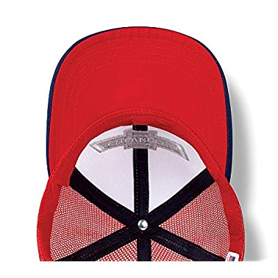 Chevrolet Chevy Truck Hat (One Size): Clothing