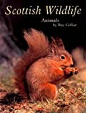 Scottish Wildlife - Animals, Ray Collier, 0948661216