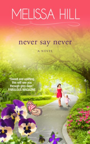 Never Say Never (Lakeview Contemporary Romance Book 3)