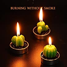 yoyowilo 3pcs Mini Cute Succulent  Cactus Candle For  Birthday Party Home Decor  and Valentine' Day  Candle Light