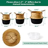 POTEY 710302 Seagrass Plant Basket - Hand Woven