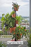5 Planter Vertical Gardening System With Drip Irrigation System Finish: Terracotta