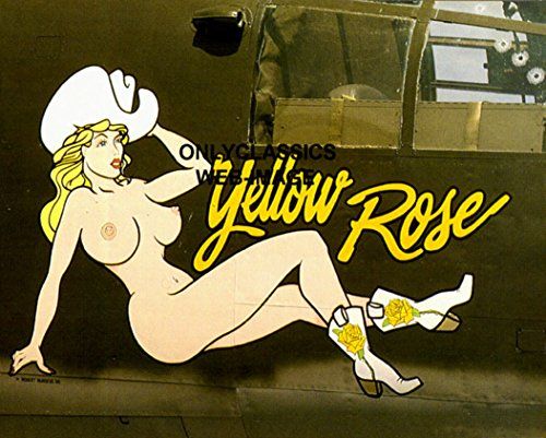 OnlyClassics WWII Bomber Airplane Nose Art 8.5X11 Print Cowboy Yellow Rose Sexy Art Aviation