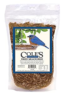 Coles Wild Bird Prod Cole's Dried Mealworms Seed, Large