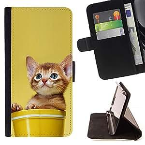 Momo Phone Case / Flip Funda de Cuero Case Cover - Gatito Gato Lindo En Un Crisol - Sony Xperia Z2 D6502