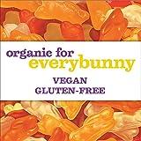 Annie's Organic Sunny Citrus Bunny Fruit