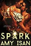 Spark (Ruin Outlaws MC series Book 2)