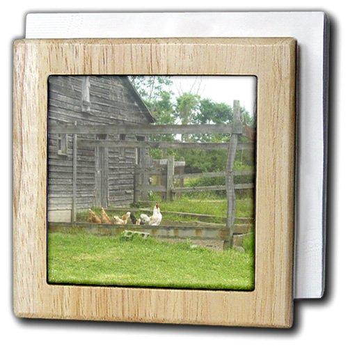 フローレンCountry Life – Country Chicken n Roosterペンバーン – タイルナプキンホルダー 6 inch tile napkin holder nh_44919_1 6 inch tile napkin holder  B007RJL3VC