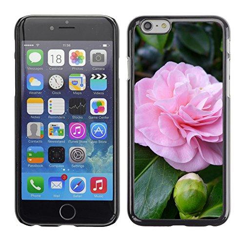 "Premio Sottile Slim Cassa Custodia Case Cover Shell // F00024014 Camelia fleur // Apple iPhone 6 6S 6G 4.7"""