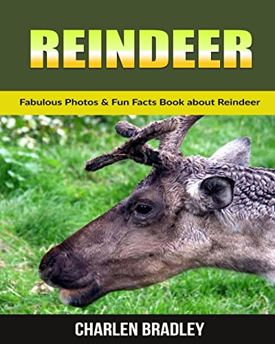 Download Reindeers: Fabulous Photos & Fun Facts Book about Reindeer ebook