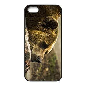 Lazy Bear Hight Quality Plastic Case for Iphone 5s