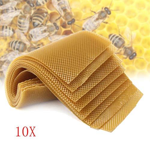 TRUST.STORE 10Pcs Bee Nest Beekeeping Honeycomb Foundation Beeswax Frames Honey Hive Garden Equipment Tool ()