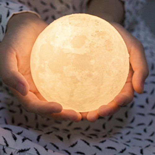 Moon Light Lamp, Luna Moon Lamp, Modern Home 3D Printing Lamp, Warm Yellow/Cool White Double Switch Night Light With Wooden Mount (Battery + Chargeable) (Small)