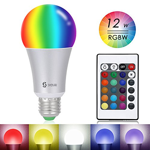 Led Light Bulb A Right Choice in Florida - 2