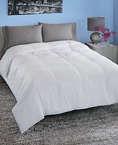 Spring Air 66211 Hypoallergenic Cotton Cover Luxury Loft Down Alternative Comforter/Duvet Insert, Twin/68 x 90', White with Light Blue Cording