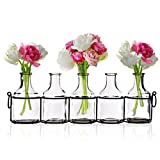lovely modern metal patio table Small Bud Glass Vases in Black Metal Rack Stand, Window-Sill Display Set of 5 Crystal Clear Flower Vase, Decorative Centerpiece for Home or Wedding