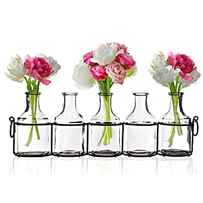 Emenest Small Glass Bud Vases for Flowers in Black Metal Rack Stand, Window-Sill Display Set of 5 Crystal Clear Flower Vase, Decorative Centerpiece for Home or Wedding - CHEER UP YOUR HOME - Simple yet beautiful. Instantly brightens any empty space and create an elegant and relaxing design in any area of your home. Glass flower vase, mirror reflection, to see the beauty of individual stems of small flowers and garden cuttings vividly. ELEVATE ANY SPACE - Versatile jars in vintage milk bottle design. Cute countertop display of fresh or fake flowers in living room, bathroom, bedroom, windowsill or even outdoor on the porch, garden or patio. Fashionable and trendy accents have been the choice of florists for event and party decorations. MULTI-USE - Add floral arrangements - Tulips, Freesia, Pansies, Roses, Gerbers, etc.; or vase fillers - pebbles, polished pearl beads, aquarium glass gems, acrylic ice rocks, marbles stones. - vases, kitchen-dining-room-decor, kitchen-dining-room - 51tzDSAG8TL. SS400  -