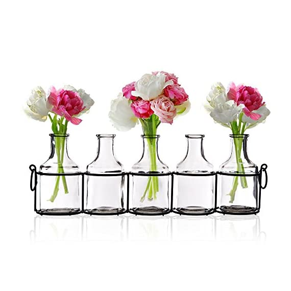 Emenest Small Glass Bud Vases for Flowers in Black Metal Rack Stand, Window-Sill Display Set of 5 Crystal Clear Flower Vase, Decorative Centerpiece for Home or Wedding - CHEER UP YOUR HOME - Simple yet beautiful. Instantly brightens any empty space and create an elegant and relaxing design in any area of your home. Glass flower vase, mirror reflection, to see the beauty of individual stems of small flowers and garden cuttings vividly. ELEVATE ANY SPACE - Versatile jars in vintage milk bottle design. Cute countertop display of fresh or fake flowers in living room, bathroom, bedroom, windowsill or even outdoor on the porch, garden or patio. Fashionable and trendy accents have been the choice of florists for event and party decorations. MULTI-USE - Add floral arrangements - Tulips, Freesia, Pansies, Roses, Gerbers, etc.; or vase fillers - pebbles, polished pearl beads, aquarium glass gems, acrylic ice rocks, marbles stones. - vases, kitchen-dining-room-decor, kitchen-dining-room - 51tzDSAG8TL. SS570  -