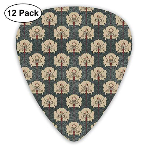 Guitar Picks - Abstract Art Colorful Designs,Art Nouveau Style Romantic Poppy Flowers Artistic And Ornate Nature Design,Unique Guitar Gift,For Bass Electric & Acoustic Guitars-12 Pack