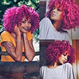 AISI HAIR Afro Kinky Curly Fully Wigs Shoulder Length Synthetic Cosplay Wigs for African American Women Natural Curly Heat Resistant Fiber Afro Hair Wigs (Magenta)