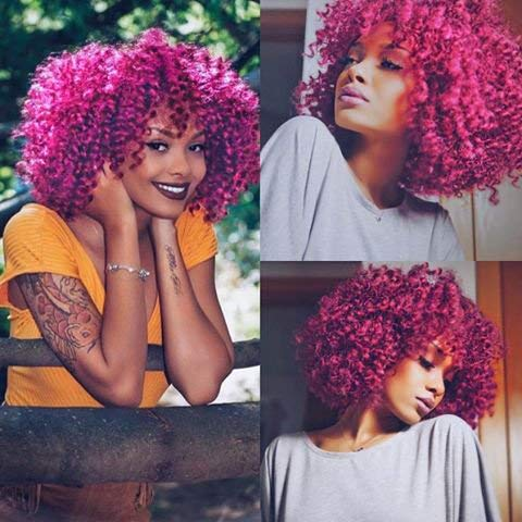 AISI HAIR Afro Kinky Curly Fully Wigs Shoulder Length Synthetic Cosplay Wigs for African American Women Natural Curly Heat Resistant Fiber Afro Hair Wigs (Magenta) ...