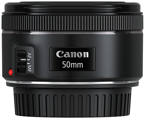 Canon-EF-50mm-118-STM-Objektiv-49mm-Filterdurchmesser-schwarz