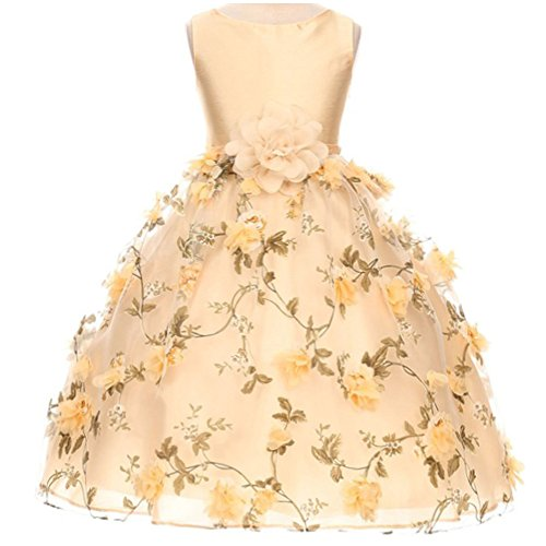 Taffeta Over - Little Girls Fabulous Taffeta Bodice Scattered Flower Over Organza Floral Pattern Overlay Skirt Champagne - Size 6