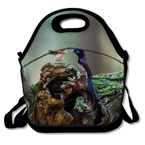 - Reusable Washable Soft Lunch Bag Animal Bird Of Paradise Lunch Box for Men Women Kids