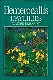 Amazon / Brand: Timber Press, Incorporated: Hemerocallis Daylillies (Walter Erhardt)