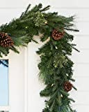 Balsam Hill 6 Mixed Evergreen Prelit Artificial Christmas Garland - Clear LED