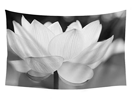 Amazoncom Lotus Flower Nature Wall Tapestry Art For Home Decor