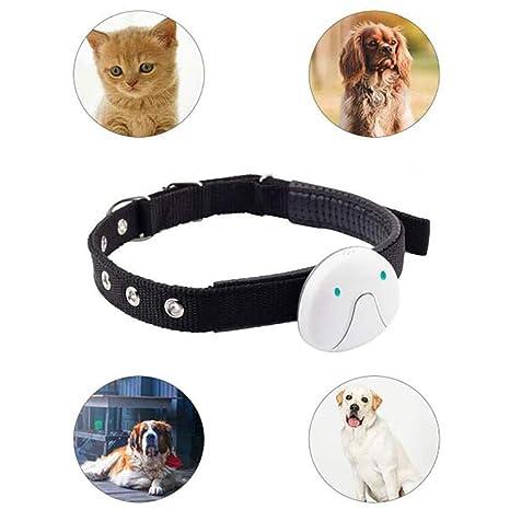 FXQIN Rastreador GPS para Perros - Collar de rastreo de GPS ...