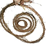 Forevercute 2pcs 12 Ft Roll Natural Dried Grapevine Garland Color Brown