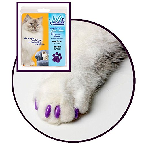 Kit de Protège-Griffes SoftClaws pour Chats Adultes Violet - MEDIUM