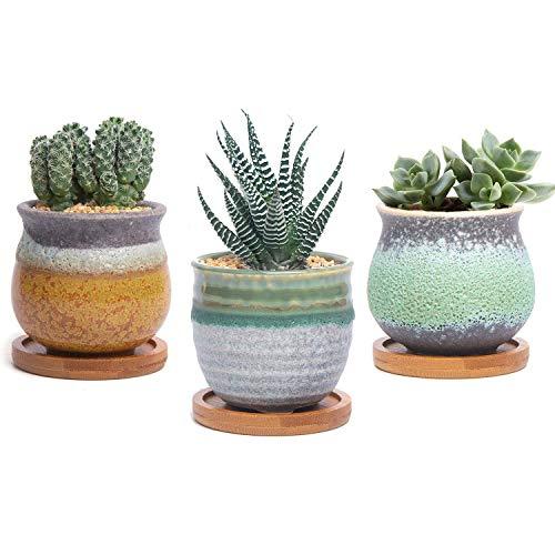 T4U Ceramic Succulent Cactus Planter product image