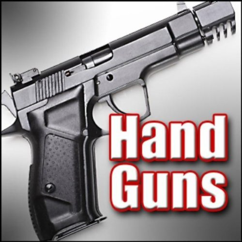 Gun, Hand Gun - Colt, Python, .357 Magnum Revolver: Indoor: Single Shot Handgun, Pistol & Revolver Firing