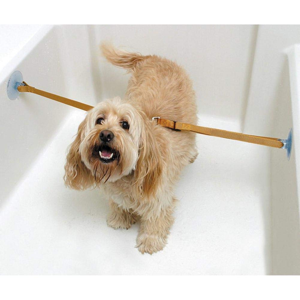 Juman634 2 PCS Cuello de Perro Cachorro Ba/ñarse Correa de Ba/ño para Mascotas Belleza Tracci/ón Cuerda Fija Ba/ñera Ventosa Cuerda Fija para Gatos Perros