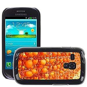 Etui Housse Coque de Protection Cover Rigide pour // M00153249 Caqui Naranja Frutas // Samsung Galaxy S3 MINI i8190