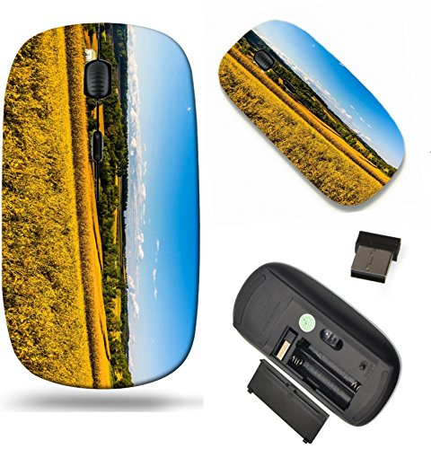 Distant Hills (MSD Wireless Mouse Travel 2.4G Wireless Mice with USB Receiver, Noiseless and Silent Click with 1000 DPI for notebook, pc, laptop, computer, mac book design 25052757 Farm fields and distant hills in r)