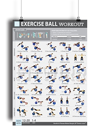 Exercise Ball Workout Poster LAMINATED product image