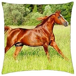 American Quarter Horse - Throw Pillow Cover Case (18