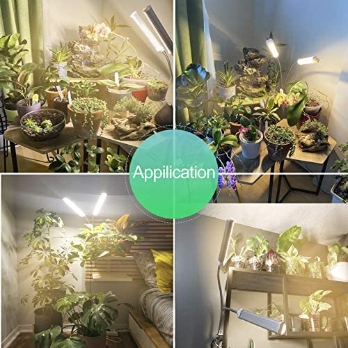 3-Switch Growing Auto On//Off Plant Growing light with 3//6//12H Timer 3-Switch Mode 5-Brightness for Indoor Greenhouse Hydroponic Seedling 100W LED Grow Light Moya Std Upgraded 210 LED Full Spectrum Grow Lamp Flowering