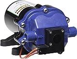 WFCO (PDSI-130-1240E Artis Series 3.0 GPM 40 PSI Water Pump