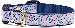product image for Up Country FLF Narrow Luxe C Flower Field Dog Collar 5/8 ""