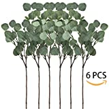 Supla 6 Pcs Artificial Silver Dollar Eucalyptus Leaf Spray in Green 25.5'' Tall Artificial Greenery Holiday Greens Christmas greenery