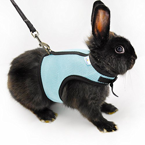 [Niteangel Soft Harness with Lead for Rabbits (Blue)] (Rabbit Leads)