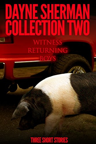 Witness, Returning, and Boys: Three Short Stories (Book 2)